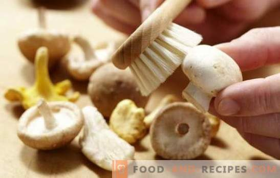 How to clean champignons: for boiling, frying, marinating. Do champignons clean before cooking and why?