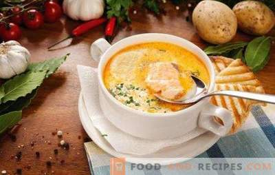 Fish soup - soup with a unique flavor! Recipes for various fish soup with canned food, fresh carcasses and fillets, cabbage, beans