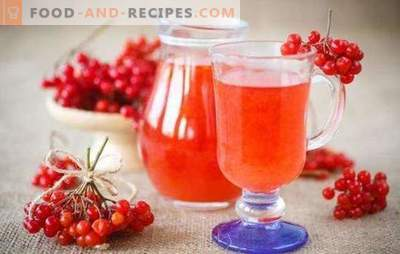 Wine from viburnum at home is an exotic drink available to everyone. Recipes wine from viburnum at home