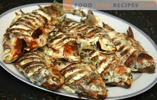 Crucians in sour cream are merchants from the past. Recipes of carp in sour cream: fried, baked and in pots