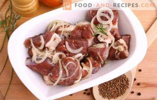 The best marinade for pork kebab - what is it? The best marinade recipes for pork kebab on kefir, mineral water, pomegranate juice