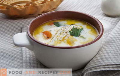 On the features of soup with melted cheese and chicken. Variations on the theme of julienne: homemade recipes for soup with melted cheese and chicken