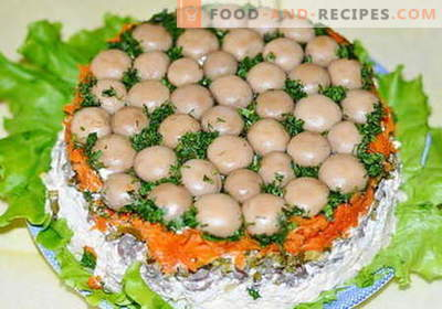 Mushroom Glade Salad - the best recipes. How to properly and tasty to cook salad glade.