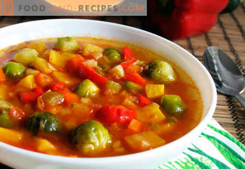 Vegetable broth soup - the best recipes. How to properly and tasty cook soup in vegetable broth.
