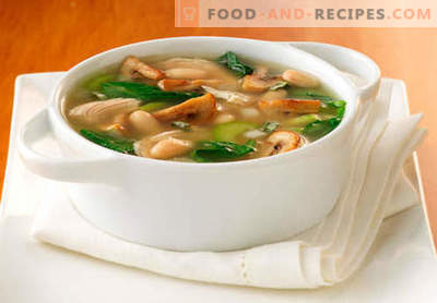 Soup in mushroom broth - the best recipes. How to properly and tasty cook soup in mushroom broth.