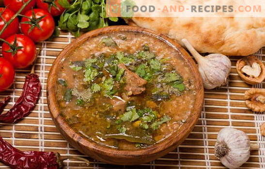 Kharcho at home - not only Georgians cook! Recipes for homemade kharcho with chicken, pork, lamb