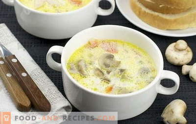 Mushroom cream soup: classic and original. Recipes light mushroom cream soup for business and home dinner