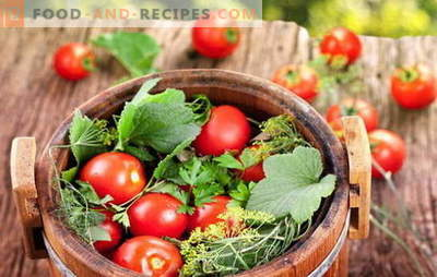 Green and red, the taste is wonderful, salty tomatoes in a barrel for the winter. Different ways of harvesting tomatoes in a barrel for the winter