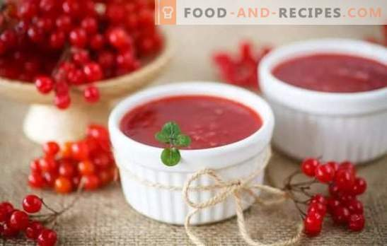 Viburnum jelly is both a treat and a medicine. Cooking jelly of viburnum as a dessert and for the winter, without stones and without cooking, with pumpkin and honey