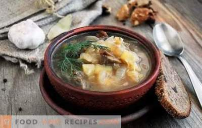 Indulge your home with delicious fresh cabbage soup with mushrooms. Recipes for fragrant fresh cabbage soup with mushrooms