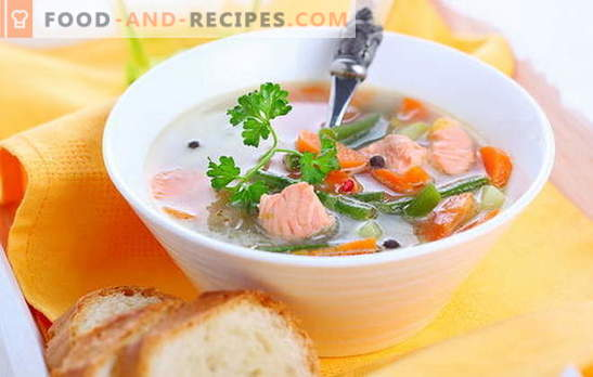 Cooking quickly - soups of tinned pink salmon. Tested popular recipes for soups of canned pink salmon