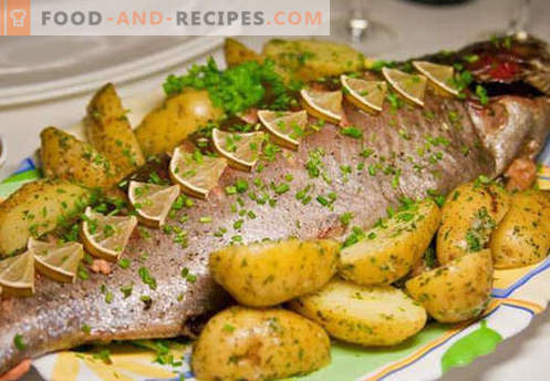 Baked salmon in the oven - the best recipes. How to properly and tasty cook salmon, baked in the oven.