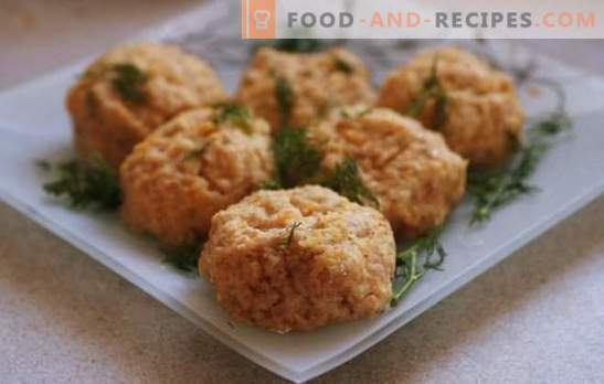 How to cook steamed diet patties? A selection of recipes for dietary meatballs for a couple of a variety of foods