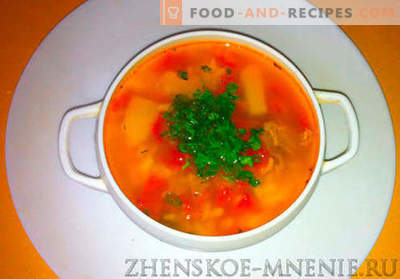 Kharcho soup - recipe with photos and step-by-step description