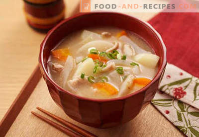 Soy soup - proven recipes. How to properly and tasty cook soy soup.