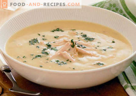 Chicken cream soup - the best recipes. How to properly and deliciously cook chicken soup.