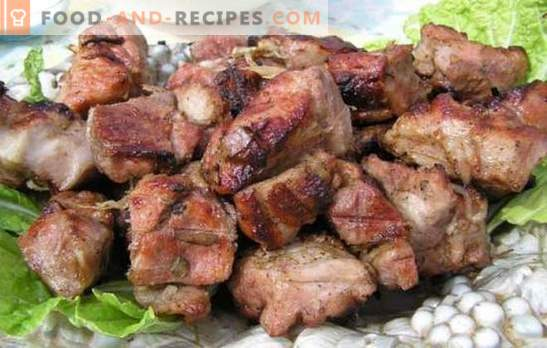 Marinade for pork kebab with kefir - tender! Collection of marinade recipes for meat on the fire: marinade for pork with kefir