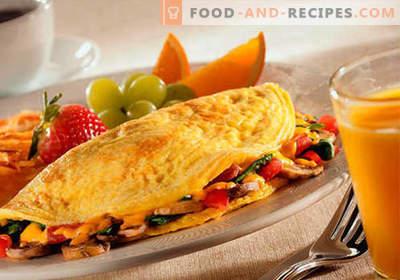 Omelette dans une mijoteuse - recettes éprouvées. Comment cuire correctement et savourer une omelette dans une mijoteuse.