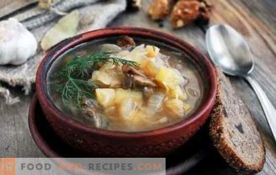 Sauerkraut soup with mushrooms: traditional and original. Secrets of cabbage soup with mushrooms, buckwheat, beans, barley