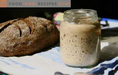 Pain au levain - le secret principal de délicieuses pâtisseries rustiques. Recettes éprouvées et nouvelles pour le pain au levain