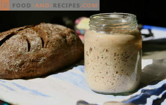 Sourdough bread - the main secret of delicious rustic pastries. Time-tested and new recipes for sourdough bread