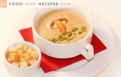 Mushroom cream soup is a delicate version of your favorite dish. The best recipes of mushroom cream soup: with cream, with cheese, rice, cognac, shrimp