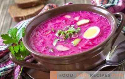 Beetroot: a step-by-step recipe for the brightest soup. Cooking classic hot and cold beetroot (step by step recipes)