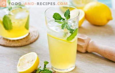 Lemon drink - energy and vitamins in one glass. Lemon drink recipes: cool lemonade or warm brew