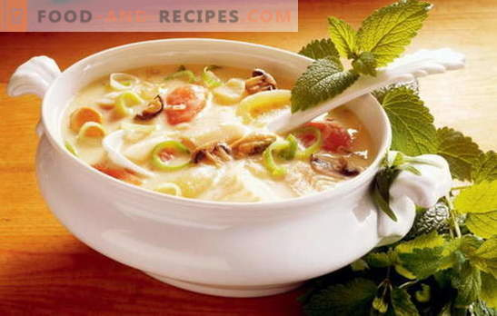 The recipe for a tasty vegetable soup is the basis of proper nutrition. A selection of the best recipes for tasty vegetable soup from different vegetables