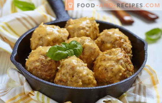 Meatballs in sour cream sauce - the best recipes. How to cook meatballs in sour cream sauce of chicken, beef, minced fish
