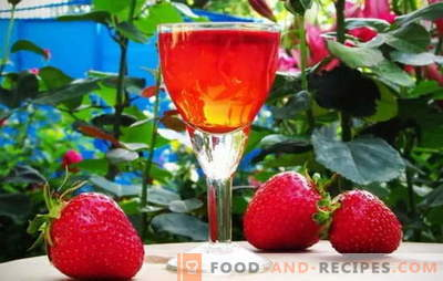 Own wine cellar: strawberry tincture on vodka at home. Secrets of cooking strawberry tincture on vodka