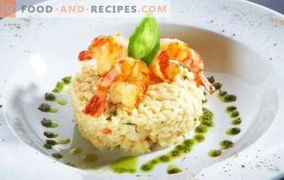 Risotto with shrimps - an Italian dish in your kitchen. A selection of the best recipes for risotto with shrimp: in cream and with wine