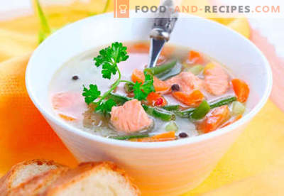 Trout soups - proven recipes. How to properly and cook trout soup.