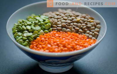 How to cook lentils red, green, brown, black. Simple ways of cooking lentils in a pan and a slow cooker: secrets and tricks
