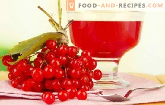 Pouring from viburnum at home: bittersweet recipes of Russian liqueur. Recipes excellent homemade liqueur from viburnum