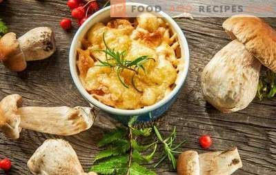 Julienne with mushrooms and cheese - French soup? Incredible adventures of a julienne with mushrooms and cheese in Russia