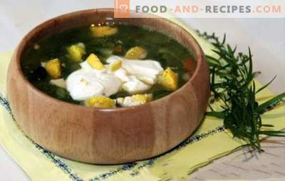 Sorrel soup in chicken broth - spring-summer menu. Sorrel soup with chicken broth - quick recipes for first courses with healthy rationalism