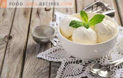Ice cream made from milk at home is a natural product! Recipes delicious ice cream from milk at home