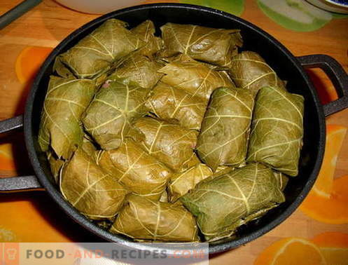 Dolma - the best recipes. How to cook and properly dolma.