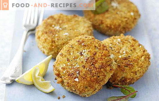 Proven recipes for pike fish cutlets: with bacon, cottage cheese, sauce. Fish pike cakes - for an encore!