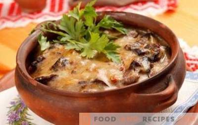 Potatoes with mushrooms in a pot - for everyday life and holidays! Different recipes for potatoes with mushrooms in pots