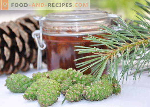 Pine cones jam: how to cook properly