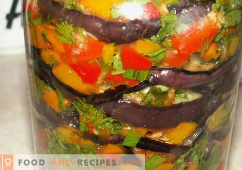 Eggplant for the winter - the best recipes. How to properly and prepare eggplant for the winter.