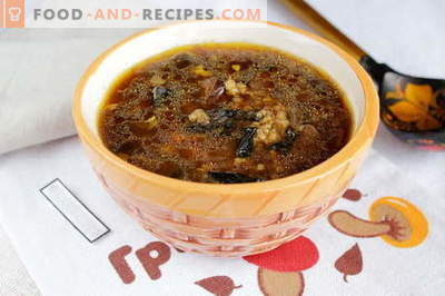 Dried mushroom soup - the best recipes. How to properly and tasty cook soup of dried mushrooms.