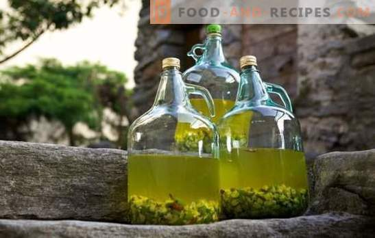 Taste and quality features of fruit raw materials for homemade gooseberry wine. Technology gooseberry wine recipes from pros