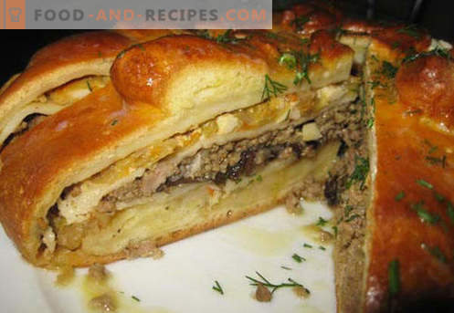 Kulebyaka with meat - the best recipes. How to properly and tasty cook meat pie with meat.