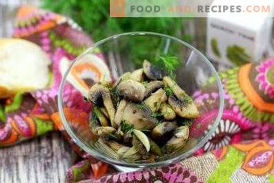 Fried champignons