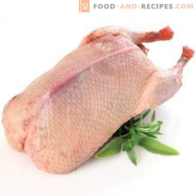 Duck meat: benefit and harm