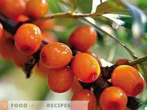 How to make sea buckthorn oil