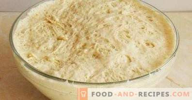 Dough for whites with dry yeast